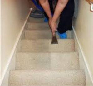 carpet cleaning west lothian