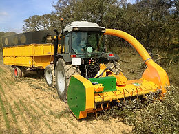 Biomass 150