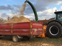 Biomass 400