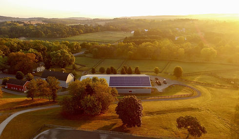 solar-farm-4443338.jpg
