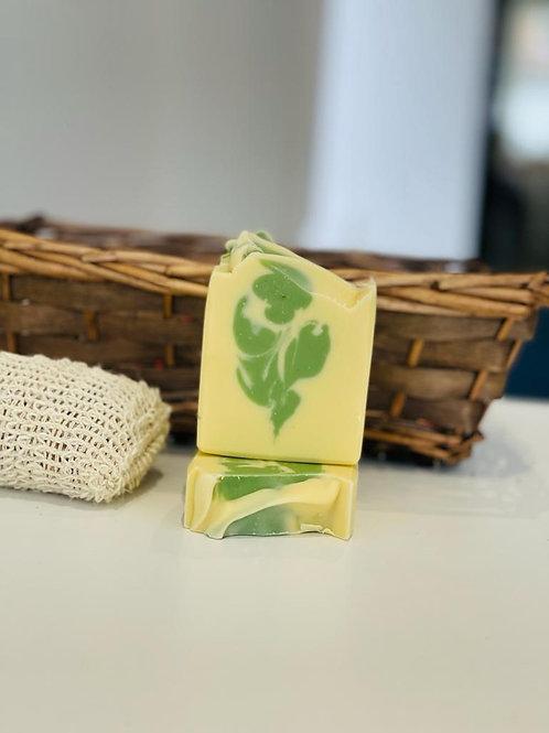 Aloe Vera Facial & Body Bar Soap