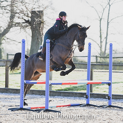 Oakfield Equestrian