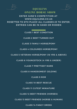 Equilens Online Horse Show!
