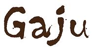 6 GAJU_logo_CS6.png