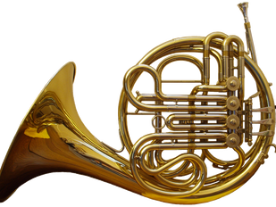 Horn auditions on May 18, 2017