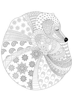 Doodle dog colouring page