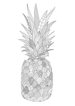 Pineapple colouring page