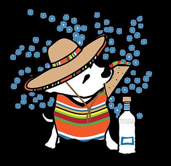 Taco Tuesday Dog