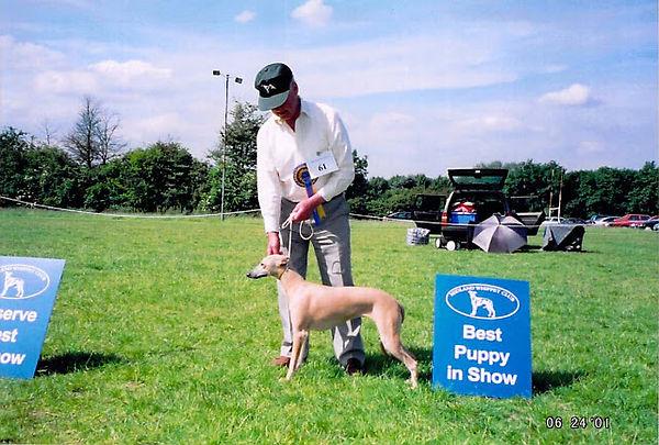 puppy open 2001.jpg