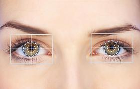 Eye Tracking Online: Seguimiento y Atención Visual