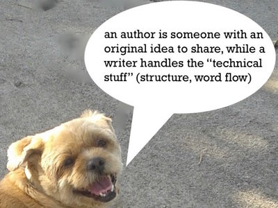 author vs. writer