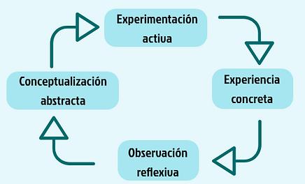 ciclo de Kolb, aprandizaje, formación,