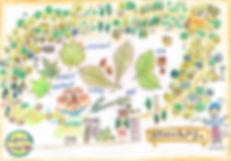 熊野神社裏山コース.jpg