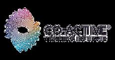 CTI-logo_edited.png