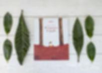 Il domatore di foglie (4).jpg