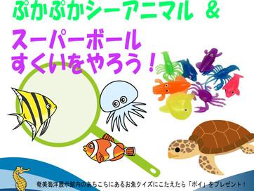 奄美海洋展示館GWイベント