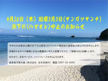 浜下れ(ハマオレ)中止のお知らせ