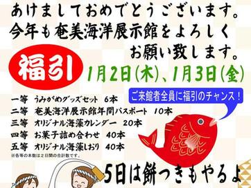奄美海洋展示館年始イベントのお知らせ