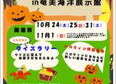 ハロウィンイベント【奄美海洋展示館】