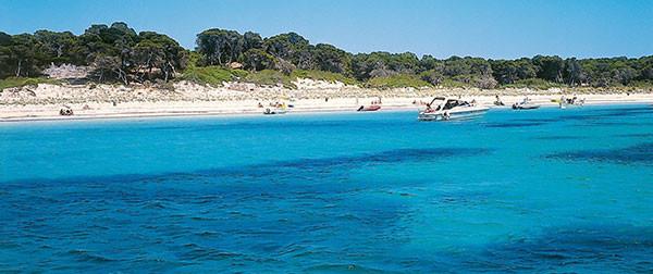 view of the coastline at sa capita mallorca
