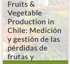 Caso de éxito en FOOD LOSS and WASTE PROTOCOL