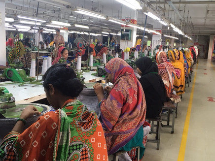 CAV+S  en China y Bangladesh