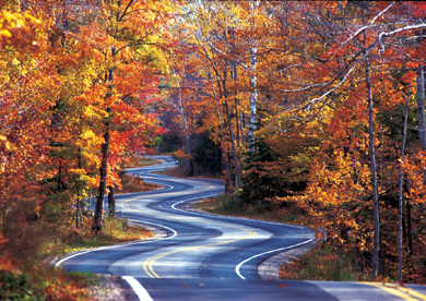 Winding Roads to Straight Points...