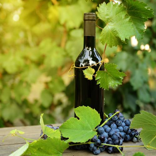 Sacramento Area Wineries