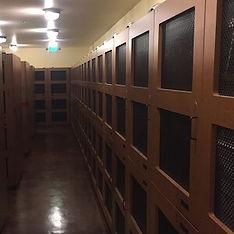 el-dorado-hills-underground-wine-storage