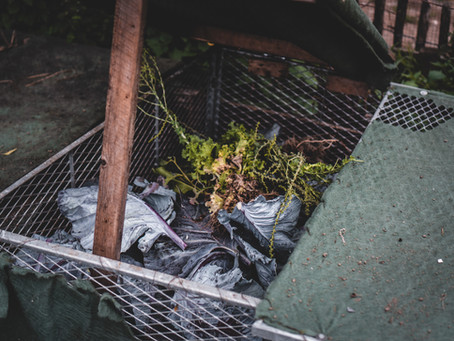 A Step-by-step Guide to Making Compost for Beginners