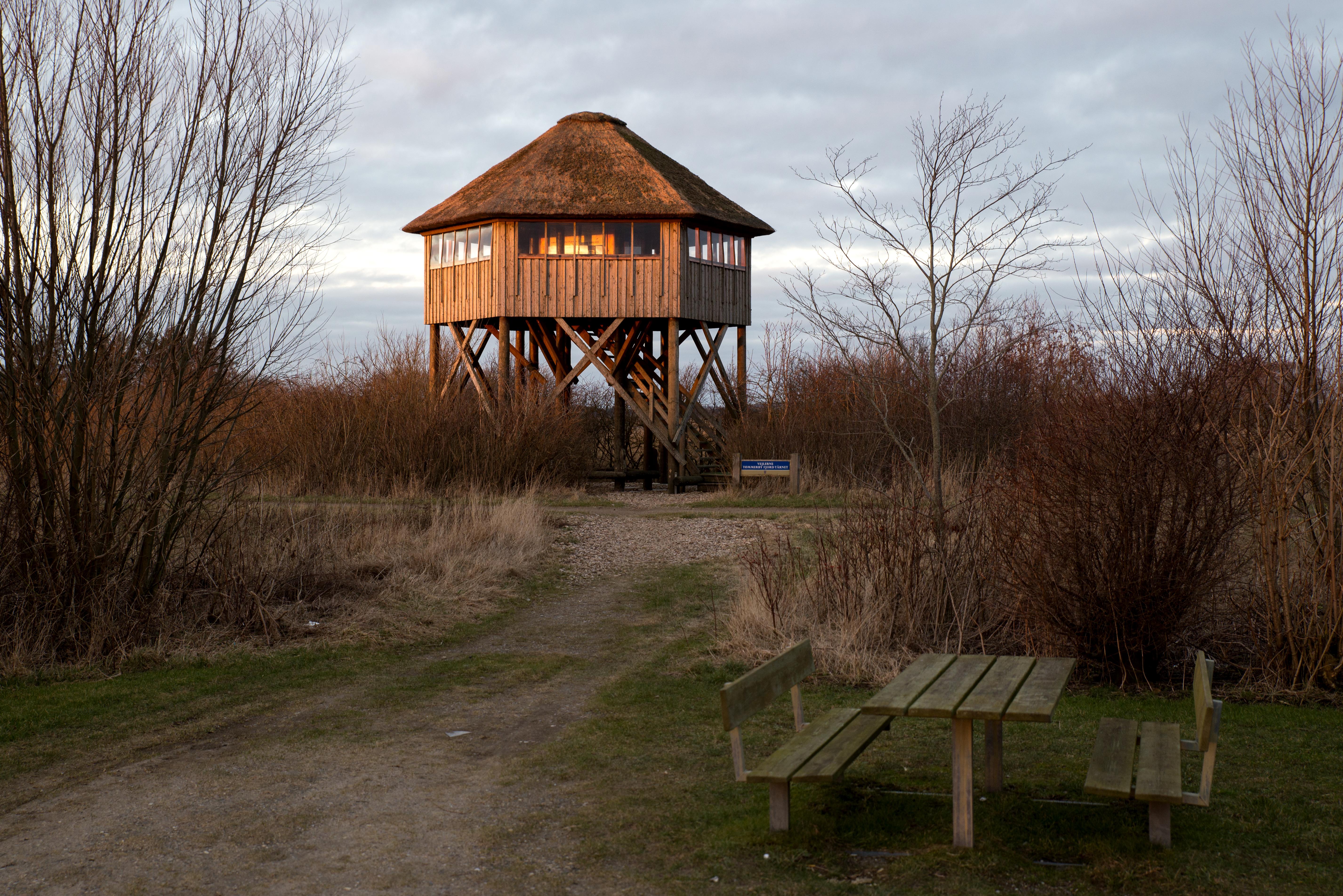 Fugletårnet