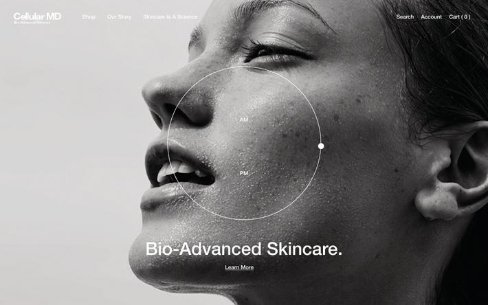Cellular MD — Website design