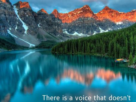 The Wisdom of Silence
