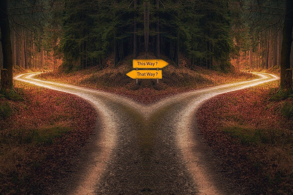 A road diverging into 2 roads in the woods with one sign pointing right and saying this way? while the other sign points left and says that way? Kristi Ryan Holistic Nutrition.