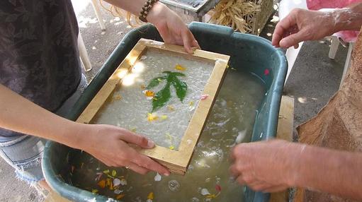 סדנת תות נייר- ייצור נייר מקליפה של עץ תות