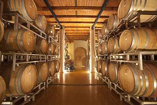 """סיור וטעימות יין ביקב אמפורה בכרם מהר""""ל"""