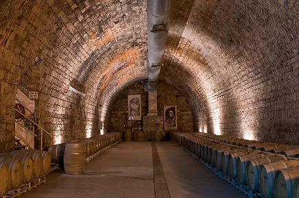חווייה תוססת במרכז תרבות היין של יקבי כרמל