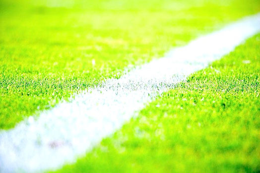 football%20field%20strips_edited.jpg
