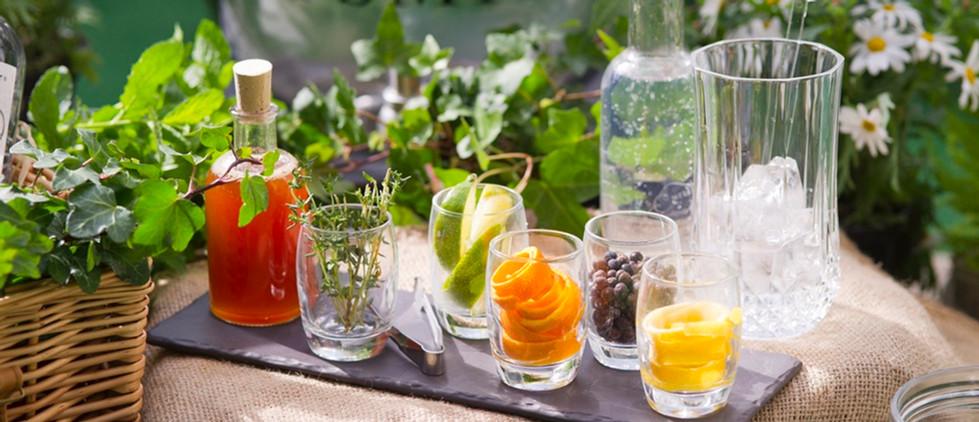 gin terrace.jpg