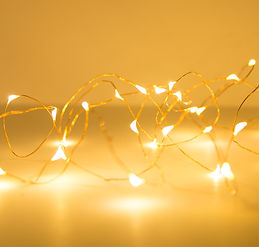 Wire Lights-12.jpg