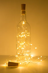 Wire Lights-8.jpg