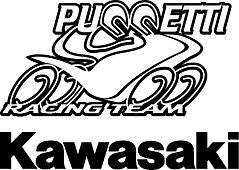 logo Kawasaki Puccetti Racing.JPG