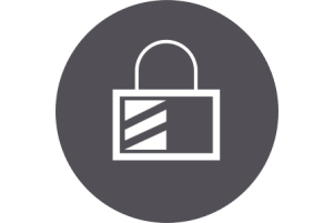 Security Icon_2.png