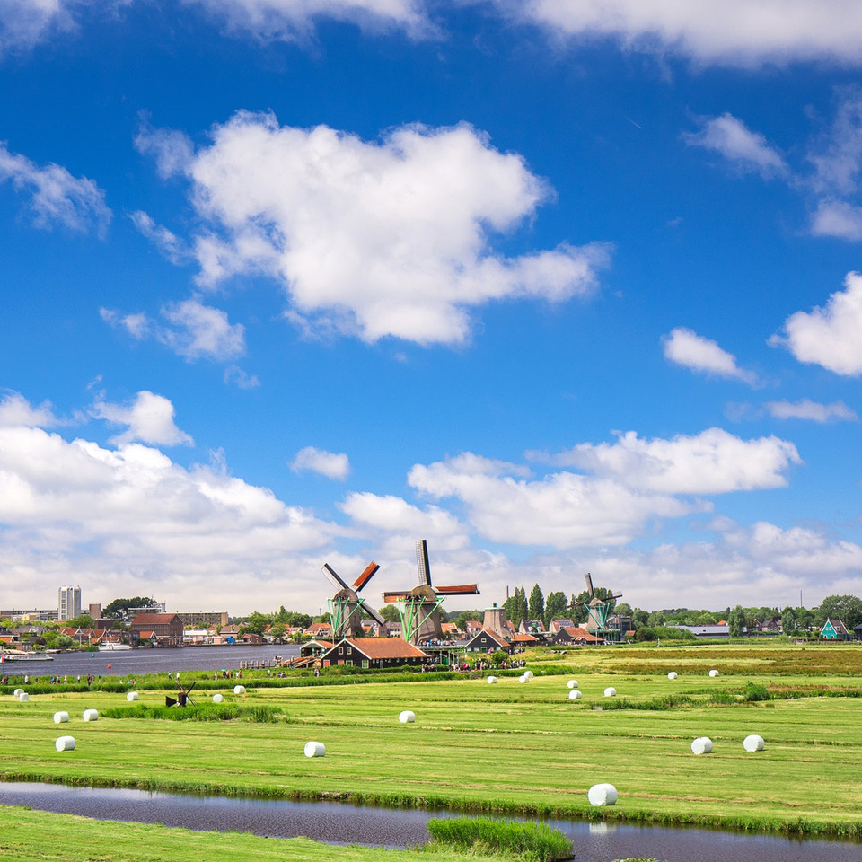 green-grass-field-2026451.jpg