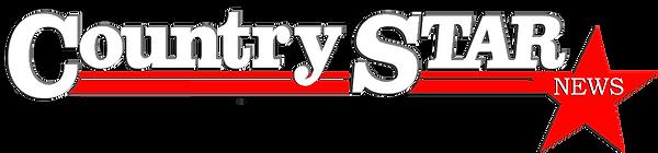 CS logo White L.png