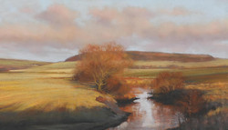 River Till near Chatton