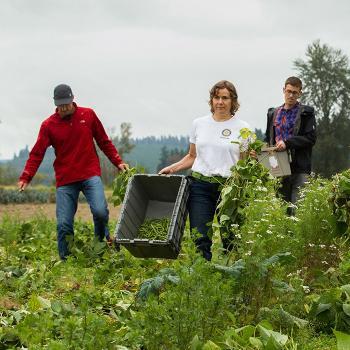 農業の促進