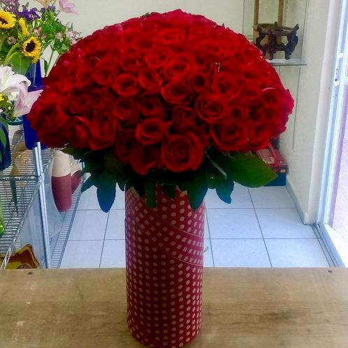 150 rosas en cilindro