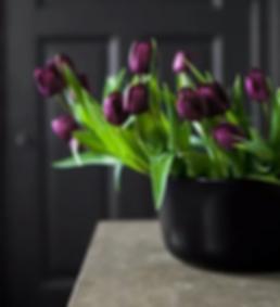 tulipanes, florerías en Querétaro