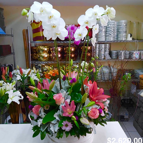 Phalaenopsis y lilies